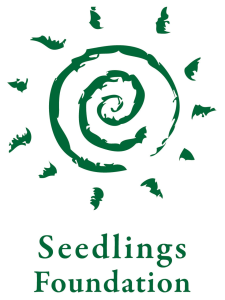 Seedlings Foundation